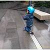 【バイリンガル育児】 英語も日本語も話すよ!2歳10ヶ月の息子の様子