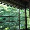 京都八瀬の瑠璃光院で青もみじ狩り
