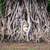 バンコク発パンダバスのアユタヤ遺跡ツアーに参加してきた