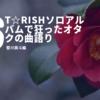 ST☆RISHソロアルバムで狂ったオタクの曲語り~聖川真斗編~
