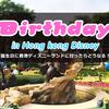 【香港ディズニーランド】誕生日限定の缶バッチをゲットしたら他にも色々もらえたよ