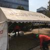 第433回よこはま月例マラソン(神奈川県横浜市)