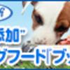 ブッチを最安値販売店はココ【初回限定特別価格】