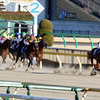 JRA 3歳最強馬は松田国英厩舎にいた!? 「文句なしに強かった」規格外のスケールに敗れた小牧太も驚愕……引退間近の名伯楽が最後の大仕事に虎視眈々