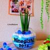 お友達、家族への新築祝いに「オシャレ」「センス有り!」な一味違う観葉植物の贈り物