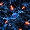 脳内のニューロンをどんどん発火させる学習法