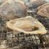 〜鳥取からの日帰り旅行|牡蠣小屋編〜 兵庫の牡蠣小屋といえば「大豊」!! 大粒で濃厚な牡蠣が食べ放題。