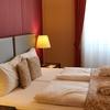 オーストリアのウィーンへ車で移動。観光することなく、スウィートホテルで過ごす。