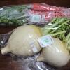 サワカフェで「きっちゃんの野菜」を買ってきました