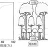 【生物基礎】第4章 植生の多様性と分布(光合成曲線・植生の遷移)