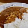 オリエンタルカレーは懐かしい味がしました。  @岐阜 養老SA下り オリエンタルカレー