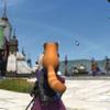虹の見える街