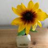 黄色の花 ヒグラシの音色