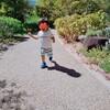 【成長記録】2歳1か月(修正1歳11ヶ月)の振り返り