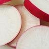 【野菜のジャケ買い】紅化粧大根『甘味が強くて美味しい♪( ´▽`)』