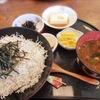 【日間賀島】孤独のグルメで紹介された乙姫さんでしらす丼ランチ♡