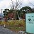 京都は嵐山へ行ってきました。沖縄との気温差約20°・・・Tシャツにジャケット1枚、死ねるコレ