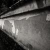 雨の日の薬師寺から唐招提寺への参道