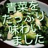 青菜をたっぷり味わいたくていろいろやってみました!昨日の続きも。