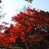 続:香山公園