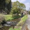 藤沢川を歩く 神奈川県中井町の小さな川