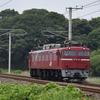 単行列車の共演