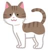 【芸ツイ】ちょっとお洒落な大人のねこマガジン「猫びより」にサンシャイン池崎が登場