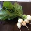 東良さんのお野菜(初夏)
