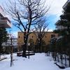 除雪も疲れてきました「金沢雪景色」