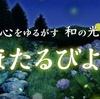 新感覚の植物園「HANA・BIYORI(はなびより)」で「ほたるびより」を開催中