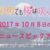 静岡で「三保羽衣薪能」
