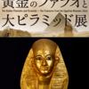 ♯126 黄金のファラオと大ピラミッド展