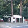 久しぶりに麻賀多神社へ参拝....オオスズメバチが耳元で💦