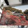 奈良・風の神様と毘沙門天