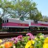 熊本・宮崎④:人気高千穂あまてらす鉄道スーパーカード 全便満席に注意!