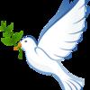 ハトはなぜ平和の象徴なの?実在したノアの箱舟