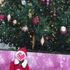 今年最後の講習会とクリスマスプレゼント