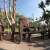 ツアー案内(バリ島の動物園)