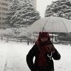 #462 4年ぶりの大雪東京!大岡山国立公園に行ってきた!