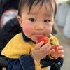 埼玉県で食べ放題のいちご狩り!ベビーカーOKな越谷いちごタウンに行ってきました