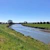 元荒川を歩く その3 蓮田川島橋(なかよし橋)から久喜・旧菖蒲町大御堂橋