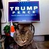 アメリカ大統領選挙のトランプ陣営の公式グッズを頼んだら友達がまさかの誤発注ww ~こんなでっかい物持って帰ってくれてありがとう~
