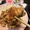 唐揚げ専門店で食べるボリューミーな定食、とりの松原店