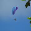 旅先で仕事をすることと、平和祈念公園で考えたこと -沖縄旅行-