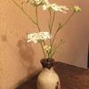 カウンターのお花:紫陽花