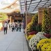 東京・文京区 文化財の寺社と文人ゆかりの地を歩く