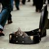 ギターバッグを買うならセミハードケースがおすすめ!