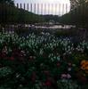 見所ガイド:国営昭和記念公園無料区