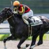 12/7(土)のJRAレース回顧と次走の馬券購入で狙う馬たち