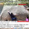 初めての岩場講習・ボルダリング編 京都笠置中止のお知らせ